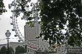 Paris and London Travels