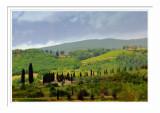 Tuscany Landscape 3