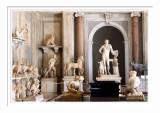 Vatican Museum 6