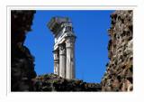 Roman Forum 6