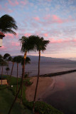 Maui 2011_009.jpg