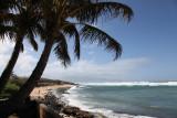 Maui 2011_025.jpg