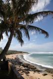 Maui 2011_026.jpg