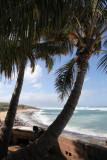 Maui 2011_030.jpg