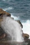 Maui 2011_051.jpg
