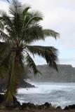 Maui 2011_136.jpg