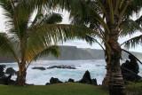 Maui 2011_137.jpg