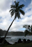 Maui 2011_138.jpg