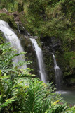 Maui 2011_143.jpg