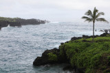 Maui 2011_150.jpg