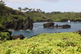 Maui 2011_155.jpg