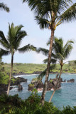 Maui 2011_158.jpg