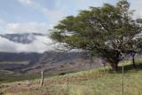 Maui 2011_186.jpg