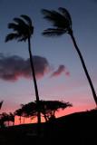 Maui 2011_199.jpg