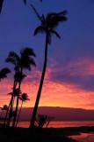 Maui 2011_201.jpg