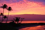 Maui 2011_202.jpg
