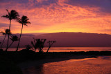 Maui 2011_203.jpg