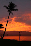 Maui 2011_204.jpg