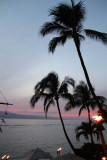 Maui 2011_300.jpg