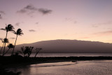Maui 2011_303.jpg