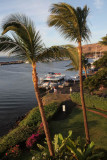 Maui 2011_305.jpg