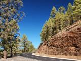 Una preciosa carretera / A beautiful road