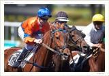 Matthieu Abrivard-Roi Winner