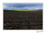 Terre et herbe.jpg