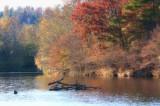 Wilkes County, North Carolina
