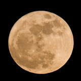 Mar 2011 'Super Moon' @ 7pm