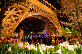 Springtime in Paris - The 2011 Philadelphia Flower Show