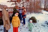 Picking out the Xmas tree