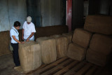 Tobaco ready for export