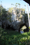 Cueva de Los Portales, Bird Survey Site