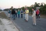 Zapata National Park, Finding Cuban Parakeet and Cuban Parot