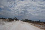 ROAD AT ETOSHA
