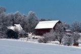 A nice covering of frost coated everything.