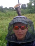 Bluebird trail monitoring