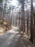 April hiking 015web.jpg