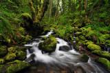 Ruckel Creek 2011-1