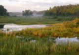 A Northwoods Wetland 0041