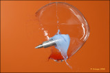 Soap bubble, droplet and projectile.