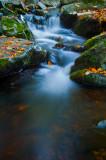 Creek in Blue Hills, close