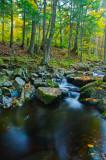 Creek in Blue Hills