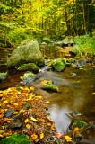 Creek in Blue Hills 3