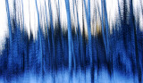In a blue forest 2