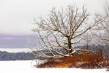winter_20072008