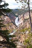 Yellowstone River Canyon WY