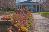 Daniel Stowe Botanical Garden & Orchid Conservatory