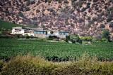 Haras de Pirque Winery (1)